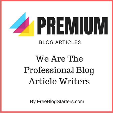 Professional Blog Article Writing Services